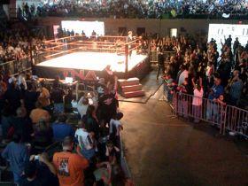 TNA Asylum (12/11/2010)
